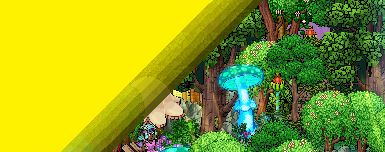 Mantar Ormanı
